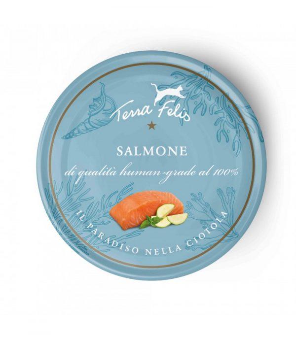 terra felis salmone